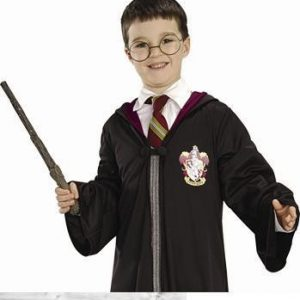 Harry Potter Eyeglasses and Wand