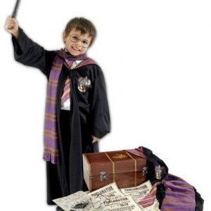 Harry Potter Trunk Set