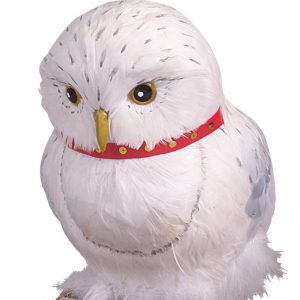 Hedwig Accessory
