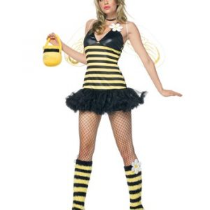Leg Avenue Sexy Daisy Bee Costume