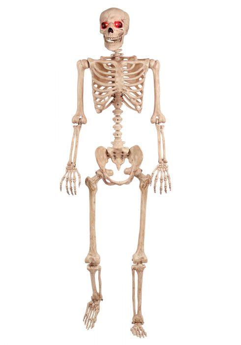 Light Skeleton with Timer
