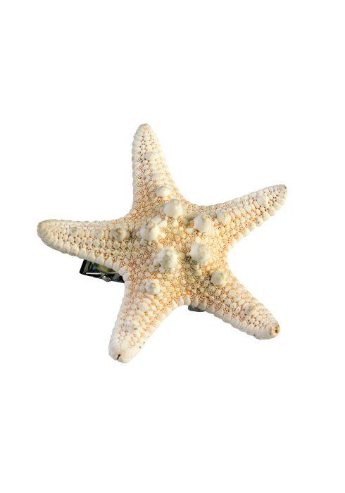 Mermaid Starfish Hairclip