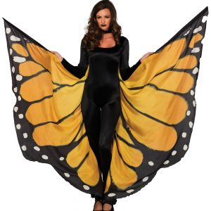 Monarch Butterfly Wings