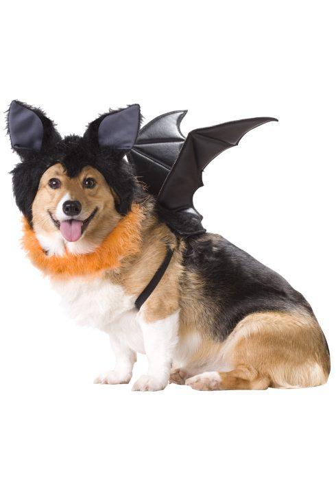 Pet Bat Costume