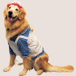 Pet Raggedy Ann Costume