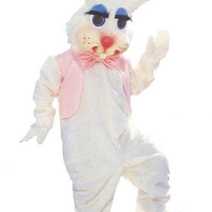 Peter Rabbit Mascot Costume