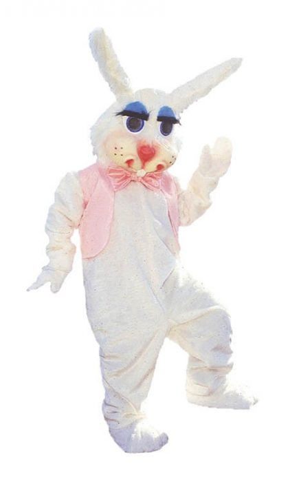 Peter Rabbit Mascot Costume