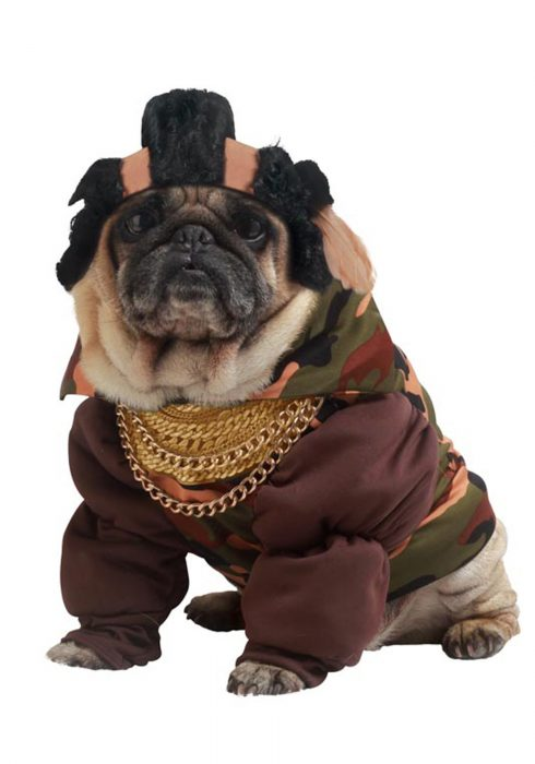 Pity the Fool Dog Costume