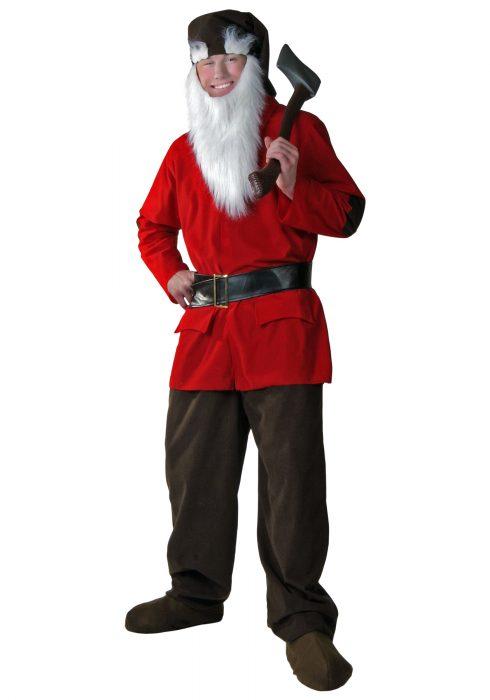 Plus Size Dwarf Costume