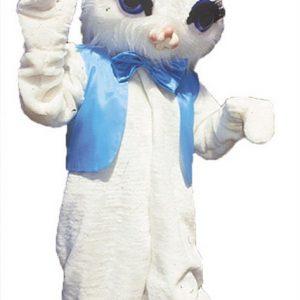 Rabbit Mascot Costume