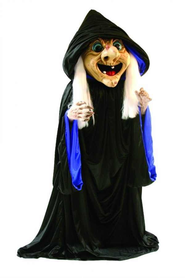 Rosie Witch Mascot Costume