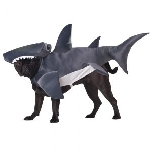 Shark Dog Costume