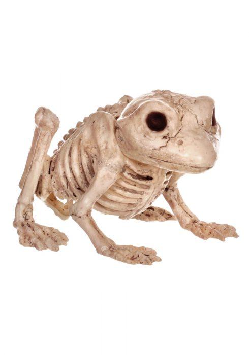 Skeleton Frog