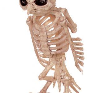 Skeleton Owl