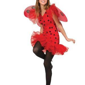 Teen Ladybug Costume