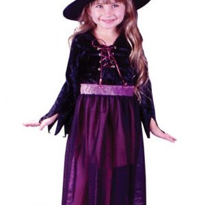 Toddler Velvet Storybook Witch Costume