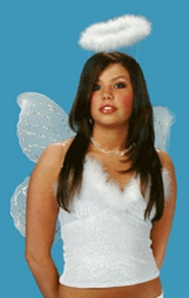 White Nylon Wings with Pink Glitter