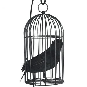Wire Bird Cage with Bird