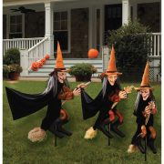 Witchly Group Set of Three