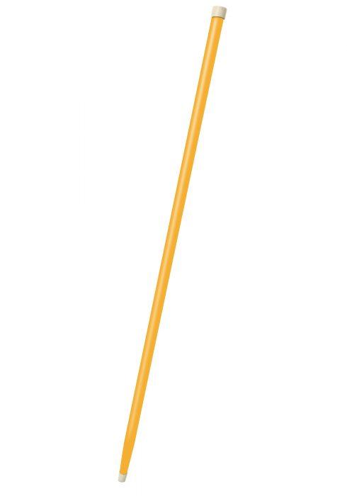 Yellow Cane