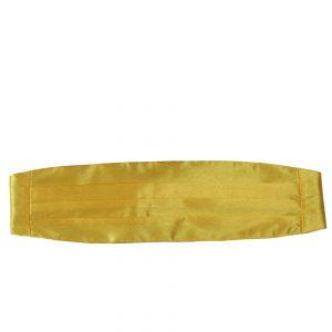 Yellow Cummerbund